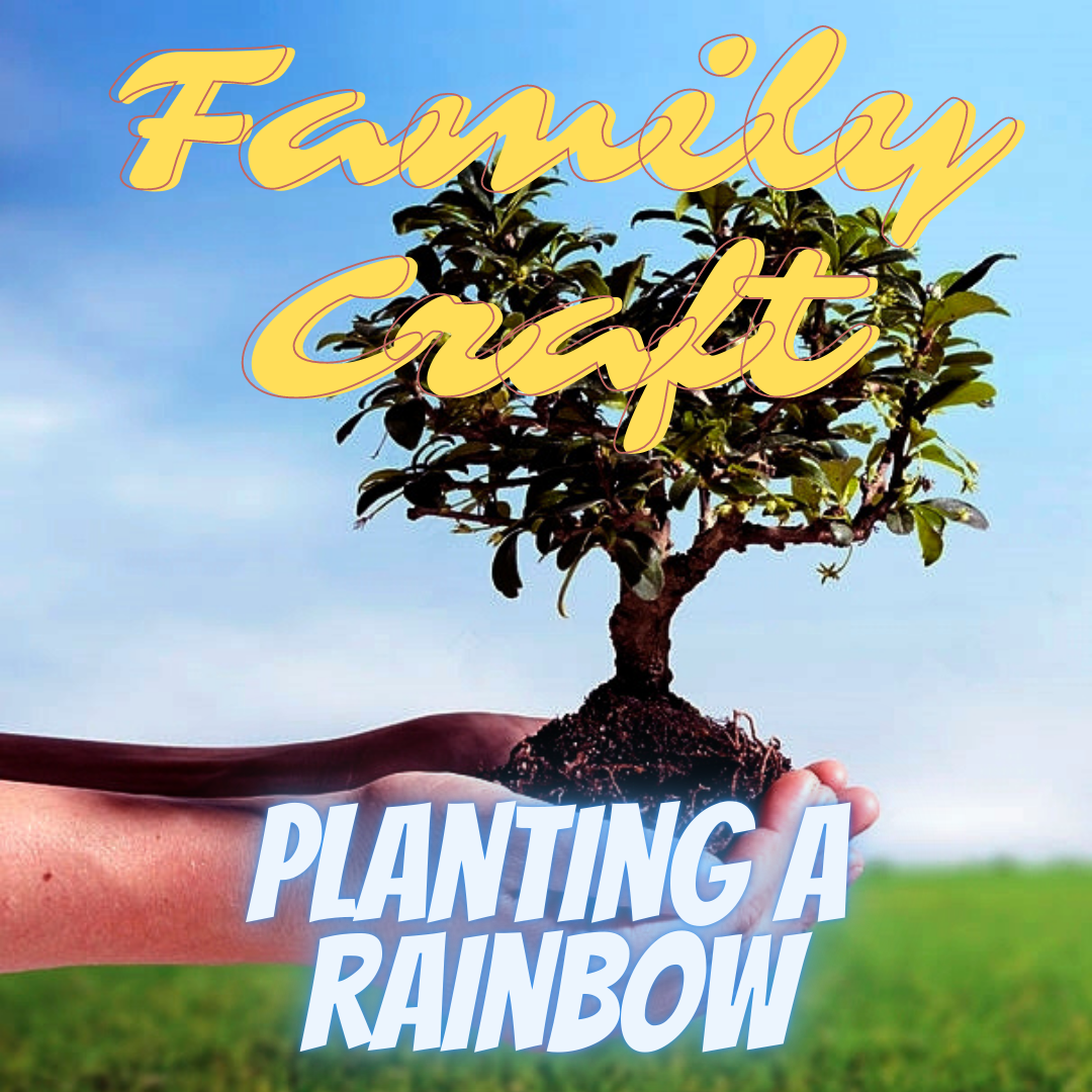 Family Craft Planting a Rainbow